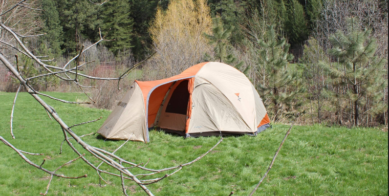 Why Adventurer Prefer to Buy the Tent Pegs in Bulk post thumbnail image
