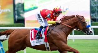 Melbourne horse racing tips