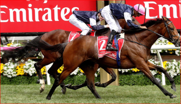 Interesting And Important Racing Tips Melbourne For Runners post thumbnail image