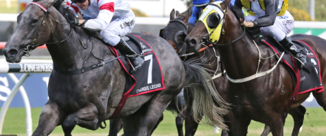 Sydney Racing Tips – Free & Fruitful Tips For Your Racing post thumbnail image