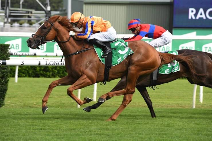 Sydney racing tips for horses to get rich post thumbnail image