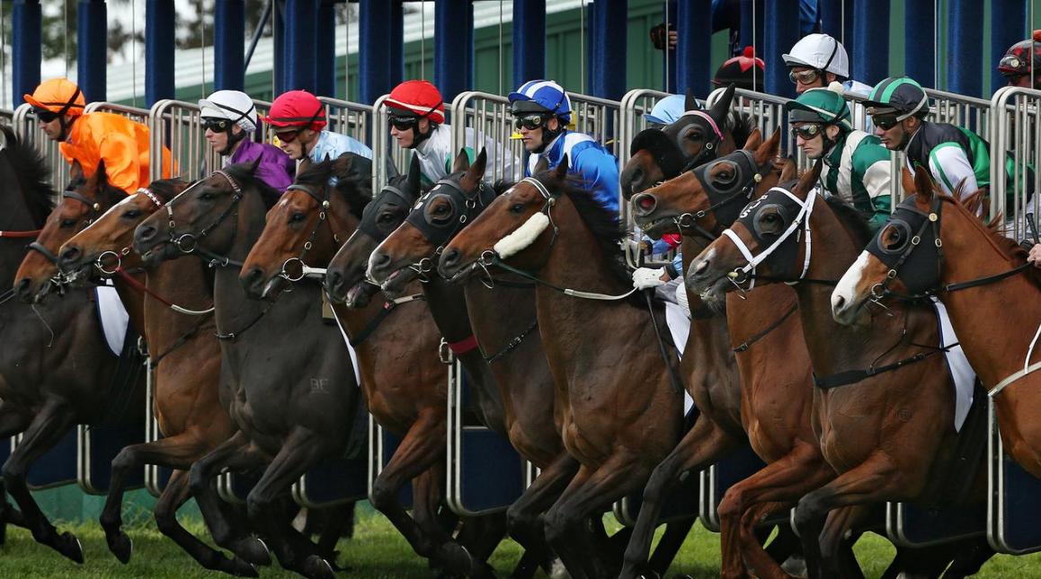 sydney racing tips